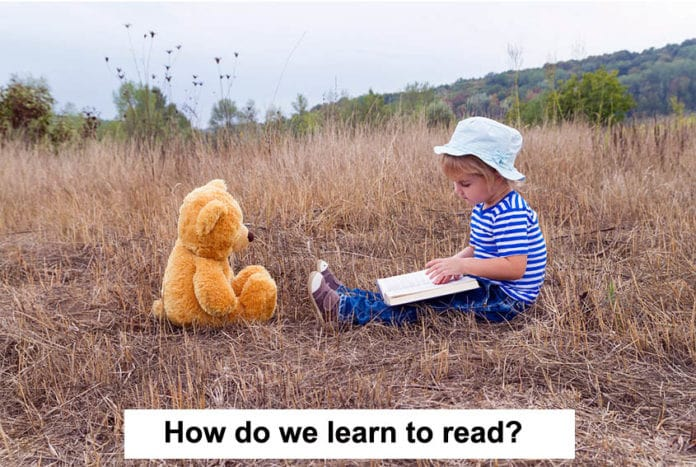 how do we learn to read?
