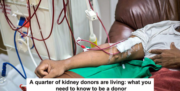 a quarter of kidney donors are living: what you need to know to be a donor