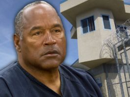 """oj simpson  (squeezing the life out of """"the juice"""")"""
