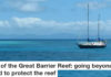 Citizens Of The Great Barrier Reef: Going Beyond Our Backyard To Protect The Reef