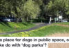 Is There A Place For Dogs In Public Spaces, Or Must They Make Do With 'dog Parks'?