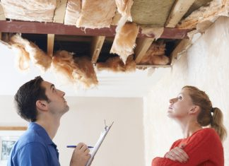 Make Your Home Pest-free With Professional Pest Control