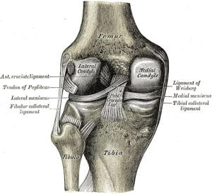 Needless Procedures: Knee Arthroscopy Is One Of The Most Common But Least Effective Surgeries