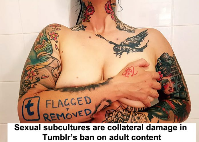 Sexual subcultures are collateral damage in Tumblr's ban  header