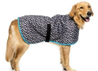 Caring Coats; Keeping Rescue Pets Warm In Winter