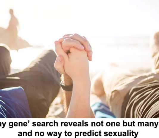 'gay gene' search reveals not one but many – and no way to predict sexuality