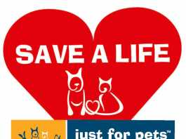 save a life animal adoption day at zoo products malvern