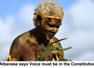 albanese says voice must be in the constitution