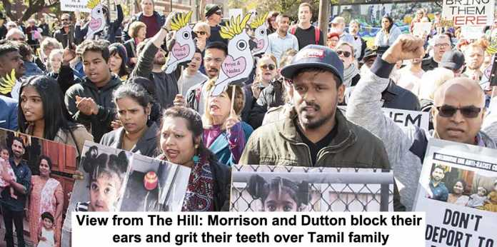 view from the hill: morrison and dutton block their ears and grit their teeth over tamil family