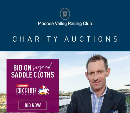 moonee valley racing club – online charity auction