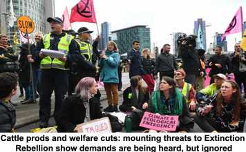 cattle prods and welfare cuts: mounting threats to extinction rebellion show demands are being heard, but ignored