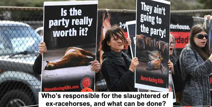 who's responsible for the slaughtered ex-racehorses, and what can be done?