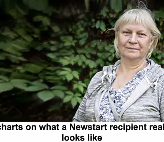 5 charts on what a newstart recipient really looks like