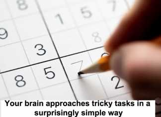 your brain approaches tricky tasks in a surprisingly simple way