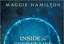 book review: inside the secret life of fairies: where dreams come true by maggie hamilton