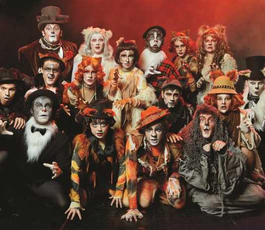 cats – the longest-running production comes to national theatre