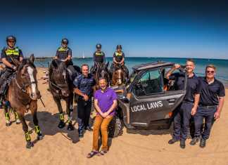 port phillip council launches 2019/20 summer in the city campaign