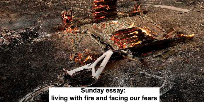 sunday essay: living with fire and facing our fears