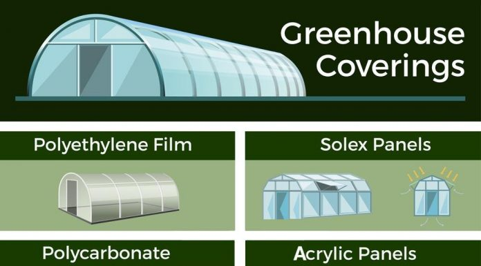 diy project- how to build a greenhouse at home using plexiglass