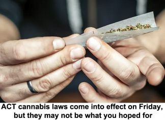 act cannabis laws come into effect on friday, but they may not be what you hoped for