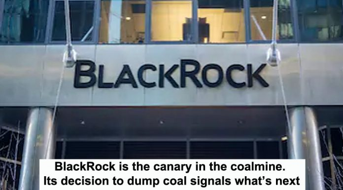 blackrock is the canary in the coalmine. its decision to dump coal signals what's next
