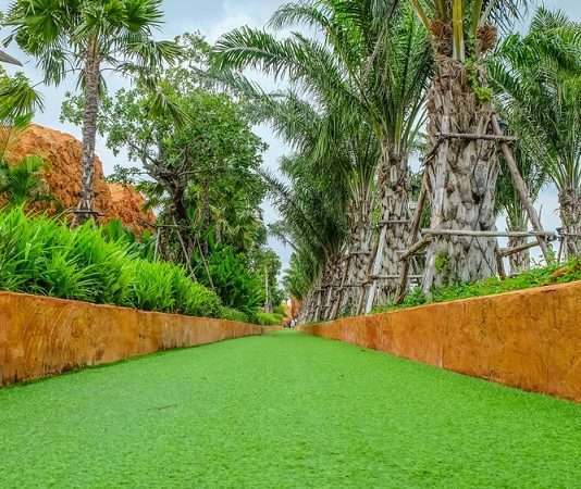 how is artificial turf beneficial and suitable for the homeowners?