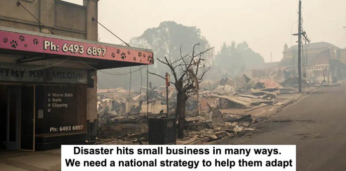 disaster hits small business in many ways. we need a national strategy to help them adapt
