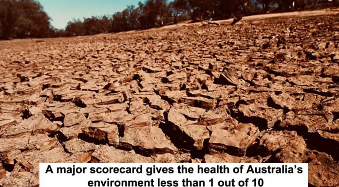 a major scorecard gives the health of australia's environment less than 1 out of 10