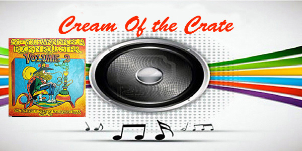 cream of the crate: album review # 140 – various artists: so you wanna be a rock 'n' roll star – vol.2