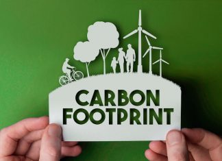 this is the carbon footprint of the food you eat
