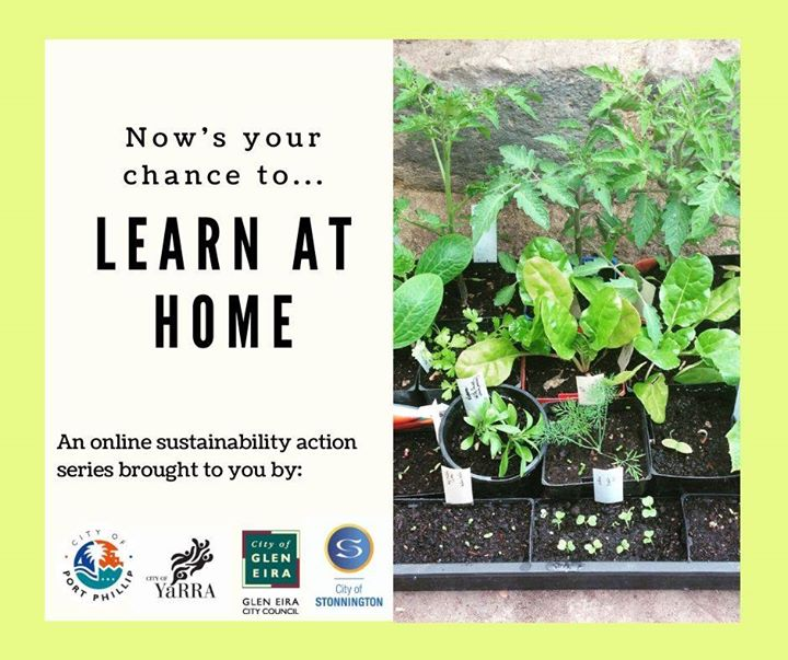 sustainable living series: love your soil with kat lavers