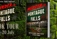 book review: murder in montague falls