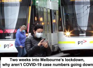 two weeks into melbourne's lockdown, why aren't covid-19 case numbers going down