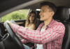 7 legal tips for driving in the usa