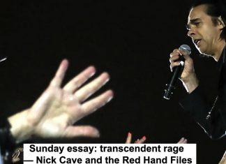 sunday essay: transcendent rage — nick cave and the red hand files