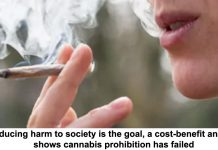 if reducing harm to society is the goal, a cost-benefit analysis shows cannabis prohibition has failed