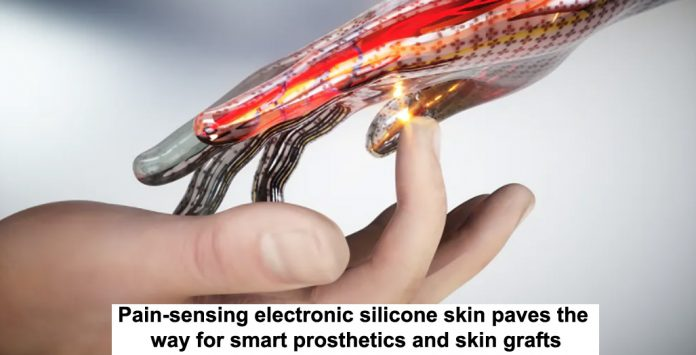 pain-sensing electronic silicone skin paves the way for smart prosthetics and skin grafts