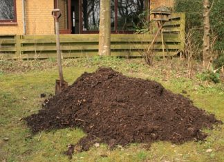 6 tips to make organic compost during the pandemic
