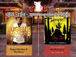 november – what's on @dogs