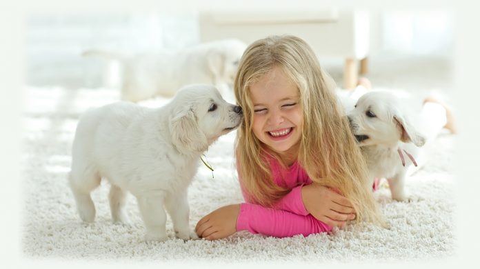 benefits of eco-friendly carpet cleaning?