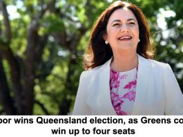 labor wins queensland election, as greens could win up to four seats