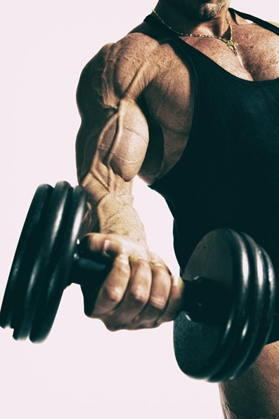 5 muscle-building fundamentals you need to know