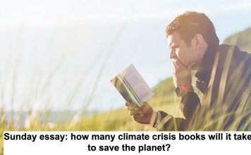 sunday essay: how many climate crisis books will it take to save the planet?
