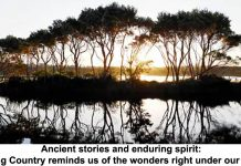 ancient stories and enduring spirit: loving country reminds us of the wonders right under our noses