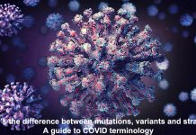 what's the difference between mutations, variants and strains? a guide to covid terminology