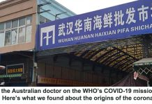 i was the australian doctor on the who's covid-19 mission to china. here's what we found about the origins of the coronavirus