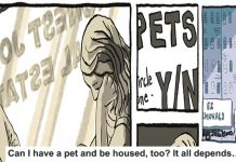 can i have a pet and be housed, too? it all depends…