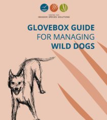 glovebox guide to support feral cat management