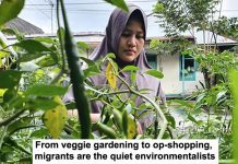 from veggie gardening to op-shopping, migrants are the quiet environmentalists