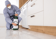 how pest control gold coast can benefit your business?